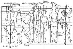 Proportions of the Human Form
