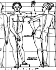 The Sculptor and Art Student's Guide to the Proportions of the Human Form