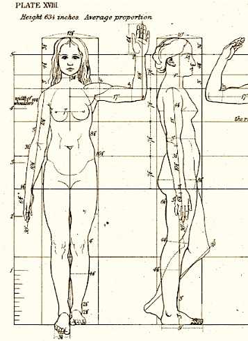The Sculptor and Art Student's Guide to the Proportions of the Human