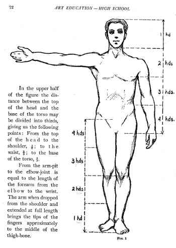 proportions of body. the ody is the equivilant